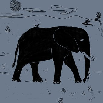 Elephant, Bird, Nature, Animal, Wildlife, Mammal