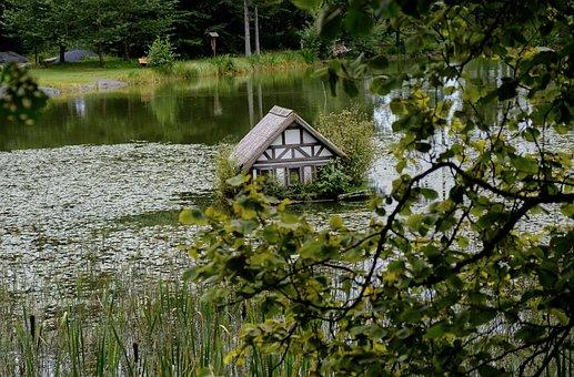 Duck House, Bird House, Lake, Nature, Water