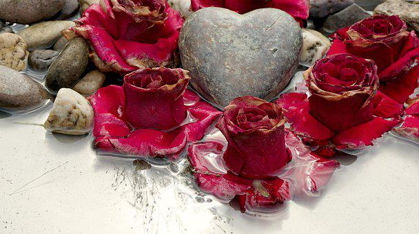 Red Roses, Heart, Pebbles, Water, Roses, Flowers