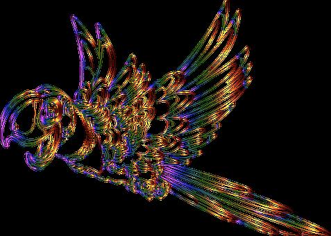 Parrot, Bird, Animal, Flying, Cartoon, Comic, Line Art
