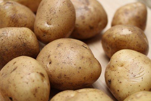 Potatoes, Vegetables, Food, Harvest, Produce, Organic