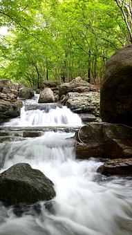 Stream, Water, Nature, Travel, Adventure, Outdoors