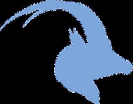 Antelope, Silhouette, Blue, Horns, Animal, Wildlife