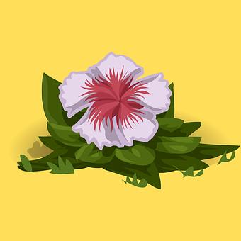 Flowers, Petals, Plant, Leaves, Floral, Flora, Nature