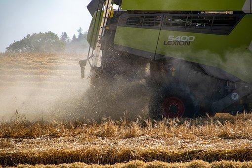 Harvest, Combine Harvester, Wheat Field, Field, Barley
