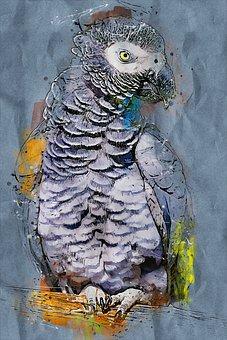 Parrot, Bird, Animal, Gray, Nature, Wildlife, Exotic