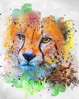 Cheetah, Wild, Cat, Predator, Animal, Nature, Wildlife