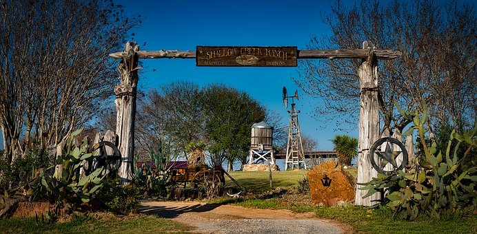 Texas, Ranch, Farm, Hdr, Entrance, Antiques, Cactus