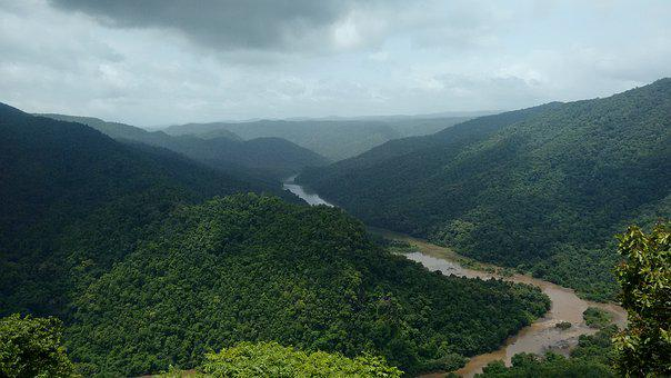 Dandeli, Kali, River, Karnataka, India, Greenery