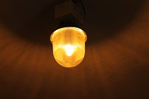 Replacement Lamp, The Light Bulb, Lighting, Light Bulb