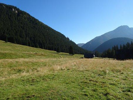 Western Tatras, Mountains, Chochołowska Valley