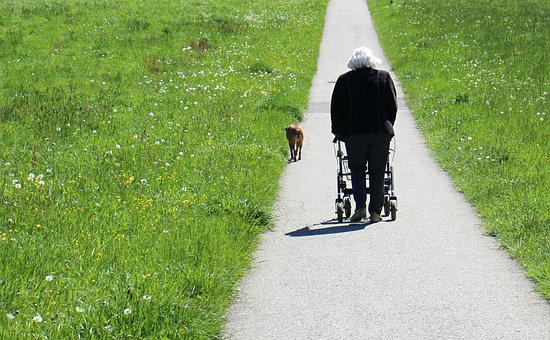 Human, Person, Age, Away, Go, Walker, Rollator