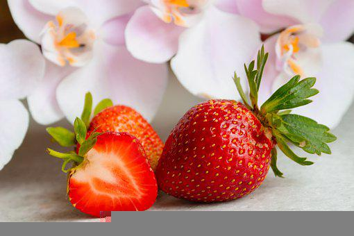 Strawberry, Berry, Orchid, Flower, Juicy, Sweet