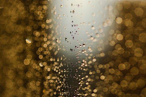 Light, Sun, Rain, Water, Drops, Bubbles, West, Bokeh