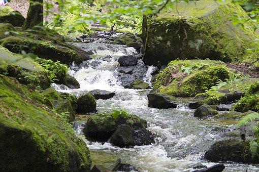 Waterfall, River, Creek, Rocks, Forest, Water, Scenic