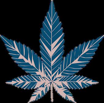 Cannabis, Marijuana, Weed, Leaf, Herb, Medicine, Drugs