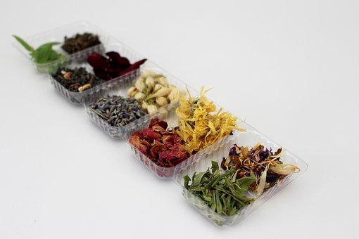 Herbs, Dried, Medicinal, Herbal, Botany