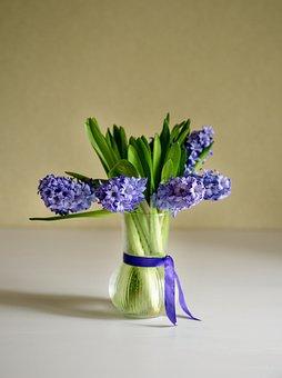 Vase, Hyacinths, Flowers, Purple Flowers