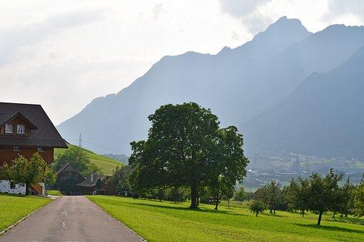 Schwyz, Town, Road, Building, House, Rural, Path, Field