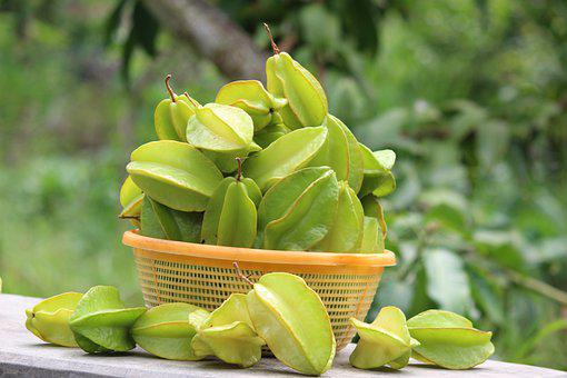 Star Fruit, Carambola, Sweet, Sour, Fuit, Fresh, Garden