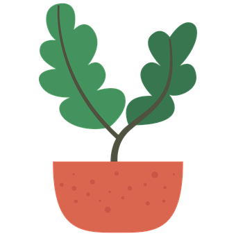 Plant, Flower, Leaves, Foliage, Pot, Potted, Herb
