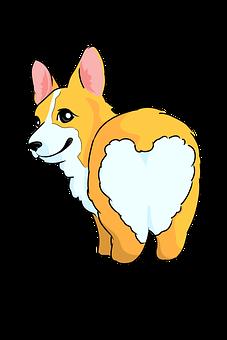 Corgi, Dog, Pet, Canine, Animal, Fluffy Butt, Puppy
