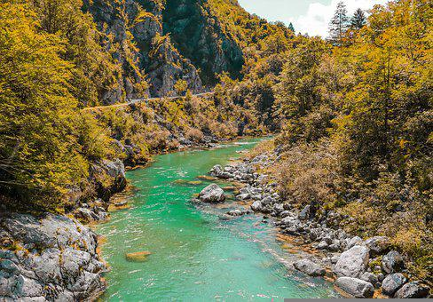 River, Nature, Travel, Forest, Landscape, Trees, Water