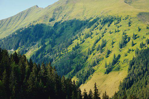 Nature, Mountains, Forest, Travel, Landscape, Outdoors