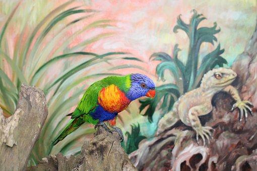 Parrot, Bird, Loriini, Perched, Animal, Feathers