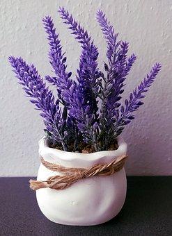 Lavender, Flowers, Vase, Bouquet