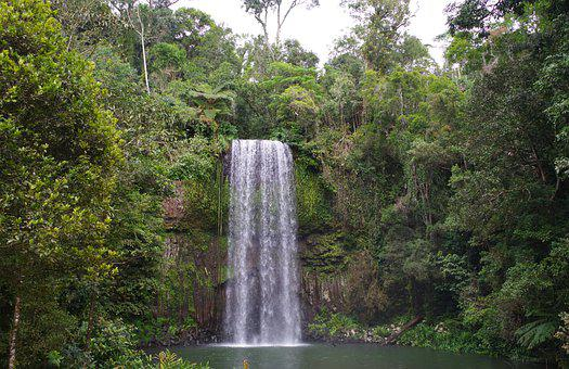 Waterfall, River, Forest, Cliff, Trees, Falls, Creek