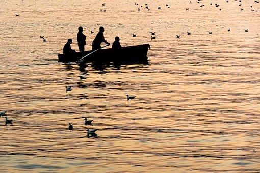 Boat, Fisherman, Birds, Silhouette, Fishing, Water