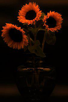 Sunflowers, Bouquet, Flower Vase, Still Life, Flowers
