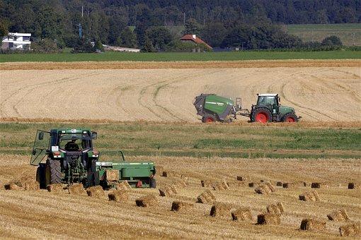Baler, Harvest, Field, Bale, Hay, Straw, Straw Press