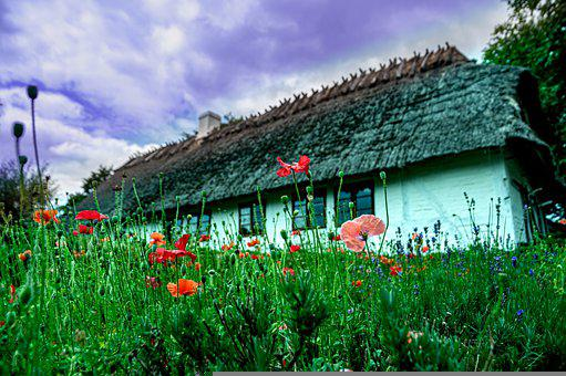 Old House, The Landscape, Architecture, Thatched Roofs