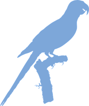 Macaw, Silhouette, Perched, Blue-winged Macaw