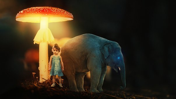 Fantasy, Mushroom, Elephant, Child, Dream, Light