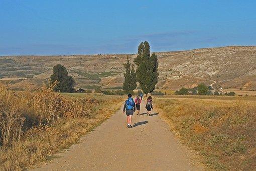 Friends, Adventure, Travel, Pilgrimage, Way, Nature