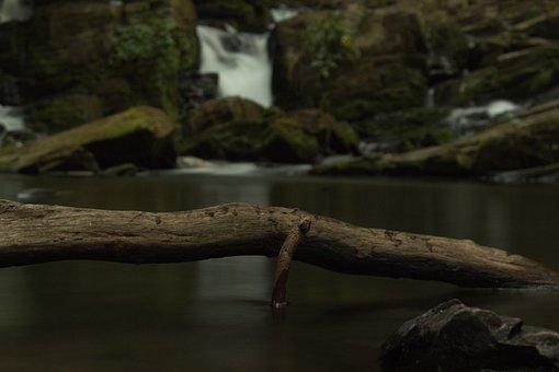 Waterfall, River, Driftwood, Stream, Creek