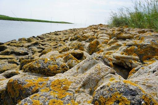 Elbe Estuary, River, Riverbank, Seashore, North Sea