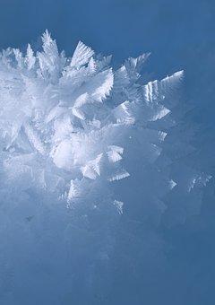 Frost, Winter, Season, Snow, Frozen, Macro