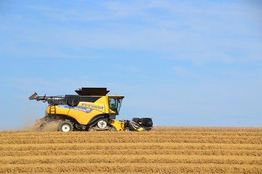 Field, Harvest, Combine Harvester, Harvester