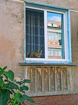 Window, House, Temple, Wall, Interior, Old, Home