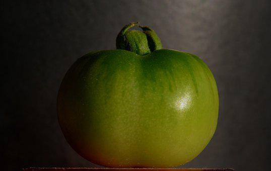Tomato, Green, Vegetables, Cultivation, Meal