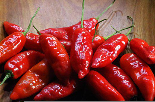 Chili Peppers, Spicy, Harvest, Ingredient, Fruit