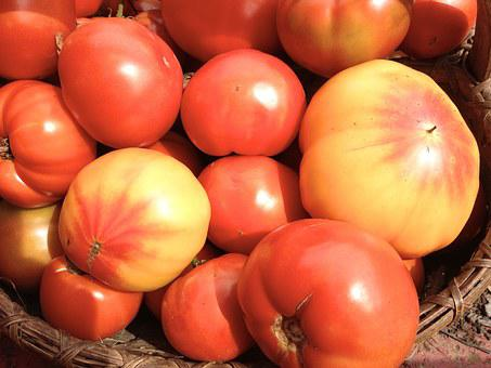 Heirloom Tomatoes, Red, Yellow, Garden, Heirloom