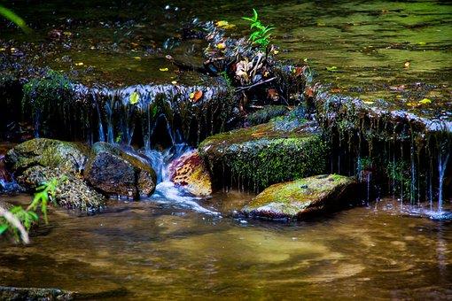 River, Waterfall, Nature, Cascades, Stream, Rocks, Moss