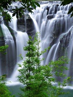 Waterfall, Cascade, River, Creek, Stream, Bamboo, Trees