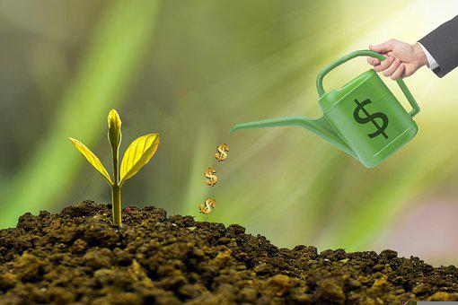 Investment, Watering Can, Dollar, Money, Revenue
