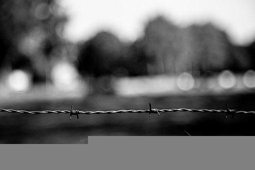 Barbed Wire, Fence, Black And White, Wire, Twisted